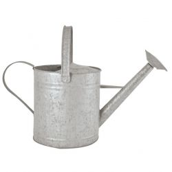Watering Can Zinc | 3.5 L