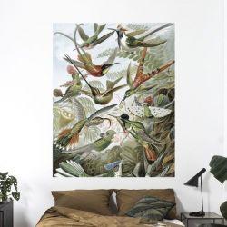 Wandtafel | Exotische Vögel