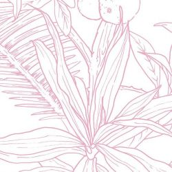 Tapete Dschungel Tropenrosa | Deko