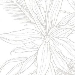Tapete Dschungel Tropisch Grau Linie | Deko