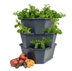 Potato Tower Starter 3 Levels PAUL POTATO | Anthracite
