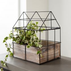 Tabletop Herb Planter Greenhouse