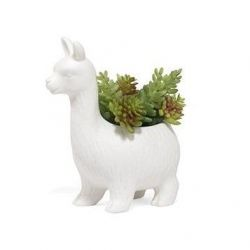 Lloyd The Llama Planter | Porzellan