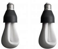 2 Bulbs of Plumen 002