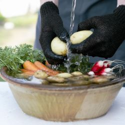 Gloves Cleaning Vegetables OneScrub | Black