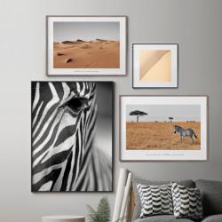 4er-Set Gerahmte Leinwand | Zebra-Komposition