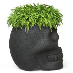 Planter Mexico | Black