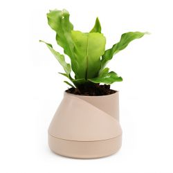 Self-watering Plant Pot Hill S | Cream