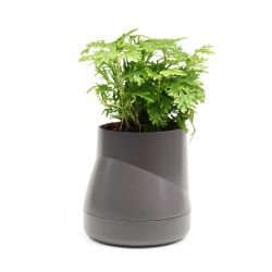 Self-watering Plant Pot Hill L | Grey