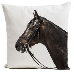 Pillow Cover | Racer