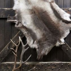 Reindeer Hide | Naturally Dark