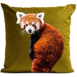 Pillow Cover | Foxy