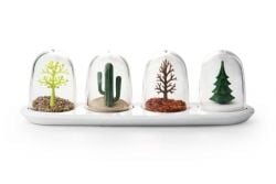 Spice Shakers Seasons