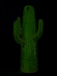 Vase Kaktus | Mini