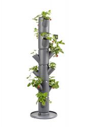 Strawberry Tower Starter 6 Levels SISSI Classic | Anthracite