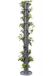Strawberry Tower SISSI Infinity | Anthracite