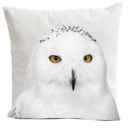 Pillow Cover | Snowy Owl