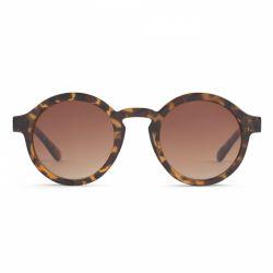 Sunglasses Belmont | Shiny Tortoise