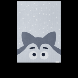 Kids Blanket | Husky