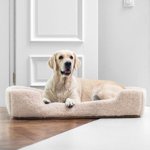 Royal Dream | Wollartikel für Hunde und Besitzer