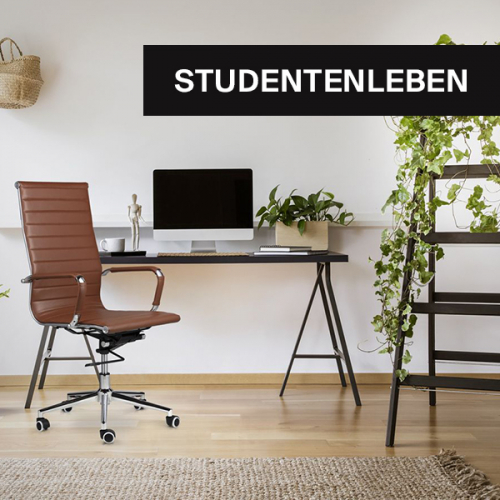 Studentenleben   Zurück zur Universität