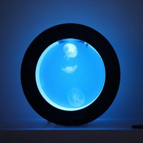 Cubic Aquarium Systems | The Ultimate Jellyfish Aquarium