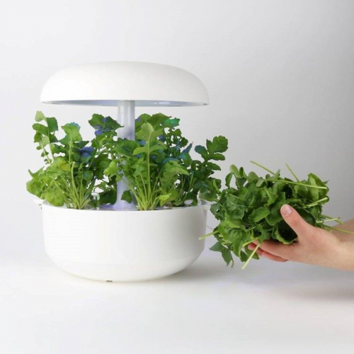 Plantui | Unique All-in-One Indoor Garden