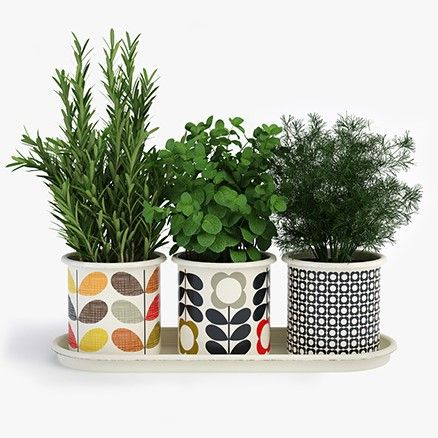 Orla Kiely by Wild and Wolf | Accessories For Green Fingers