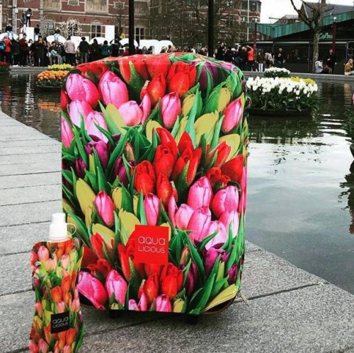 Aqua-licious | Colourful & Cool Luggage Covers