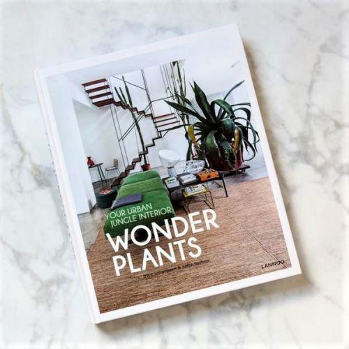 LANNOO | Bücher über Interieur & Lifestyle