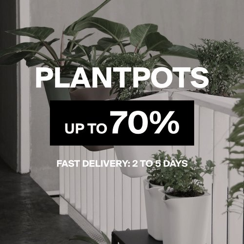 Plant Pots & Green | Up to 70%