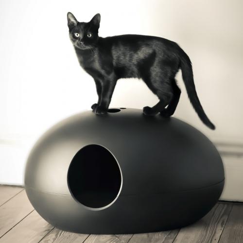 Sin Design   Designer-Katzentoilette für exquisite Samtpfoten
