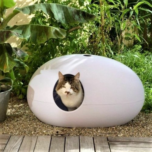 SinDesign | Design cat litter boxes