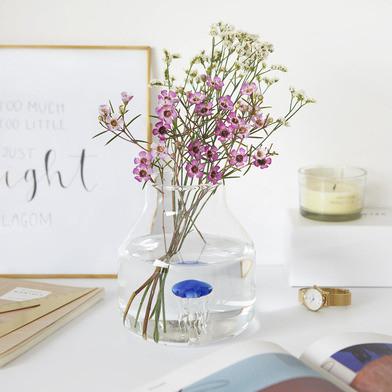 Balvi | Süße Blumenvasen