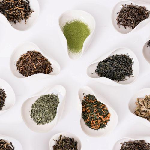P & T   Farbenfrohe & geschmackvolle Teemischungen