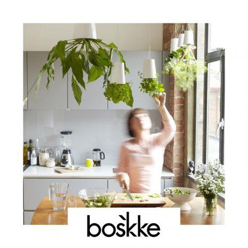 Boskke | Pots de plantes simples et ingénieux
