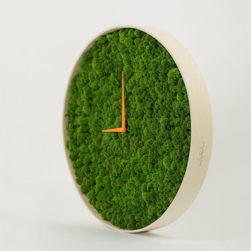 Noktuku | Unique Moss Clocks