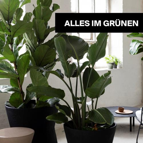 Alles im Grünen! | Grün ist das neue Wohnen