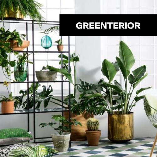 Greenterior | Grüner wird es nicht