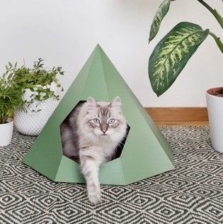 Design For Pussies | Colourful Cat Tipis