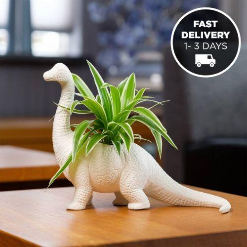 Bitten Design | Dinosaur Plant Pots
