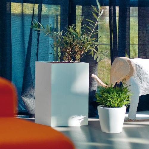 amei | Beautiful Plants in Beautiful Pots