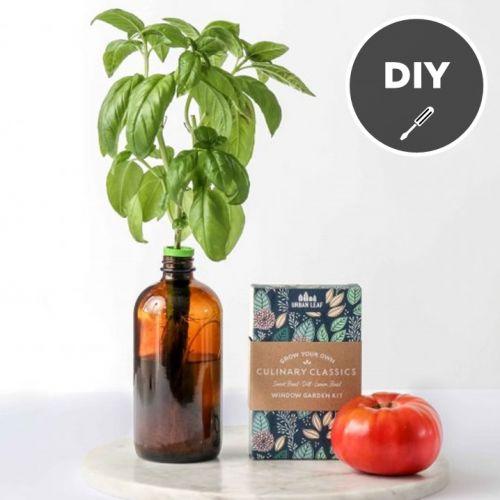 Urban Leaf | DIY Indoor Herb Garden Starter Kits