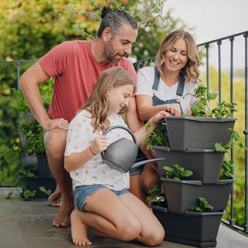 Gusta Garden | Baue Kartoffeln & Himbeeren an