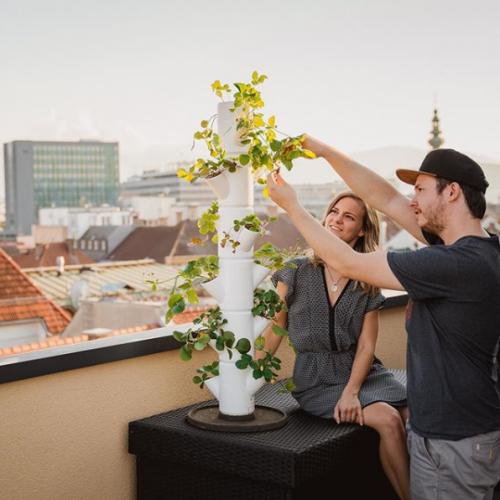 Gusta Garden | Kompakte Anbausysteme für Obst & Gemüse