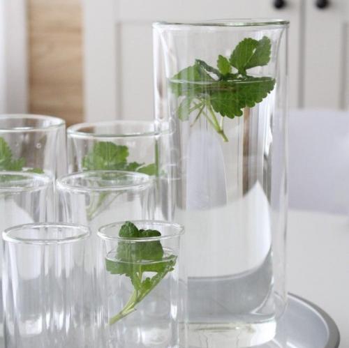 bloomix | Glasklare Qualität: Doppelwandige Thermogläser