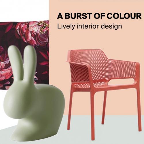 A burst of colour   Lively interior design