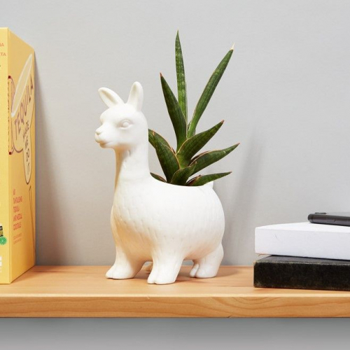 Lemon Pi | Cute Animal Planters