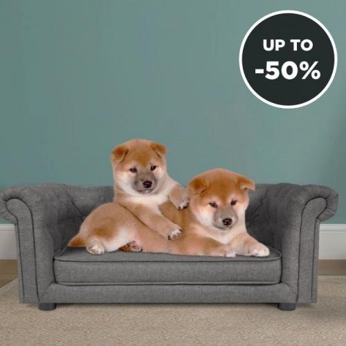 Marendog | Beds for Your On-trend Dog