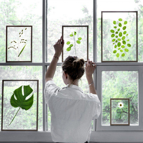 MOEBE | Beautiful Botanic Photography